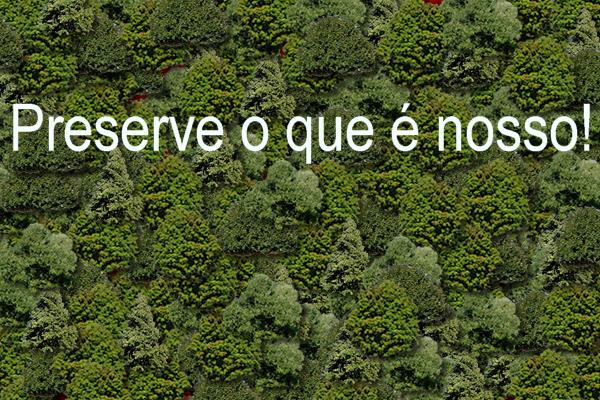 link_meio_ambiente
